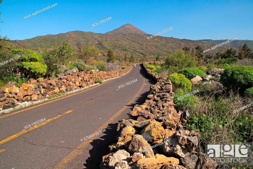 Stock Photo: Road to Teide mountain Tenerife.