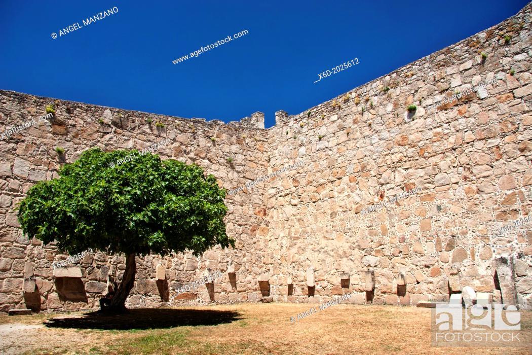 Stock Photo: Castle of Trujillo.