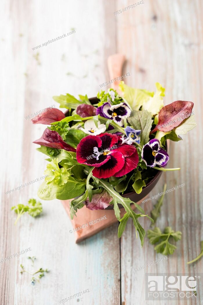 Stock Photo: Bowl of leaf salad with edible flowers.