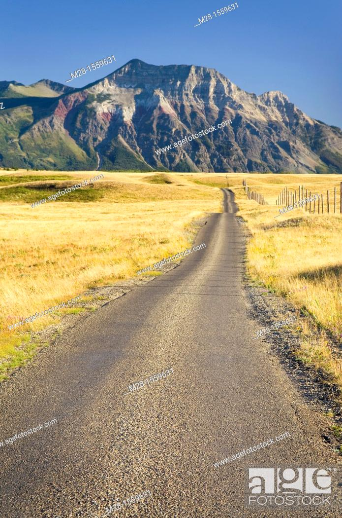 Stock Photo: Road through bison paddock, Waterton Lakes National Park Alberta Canada.