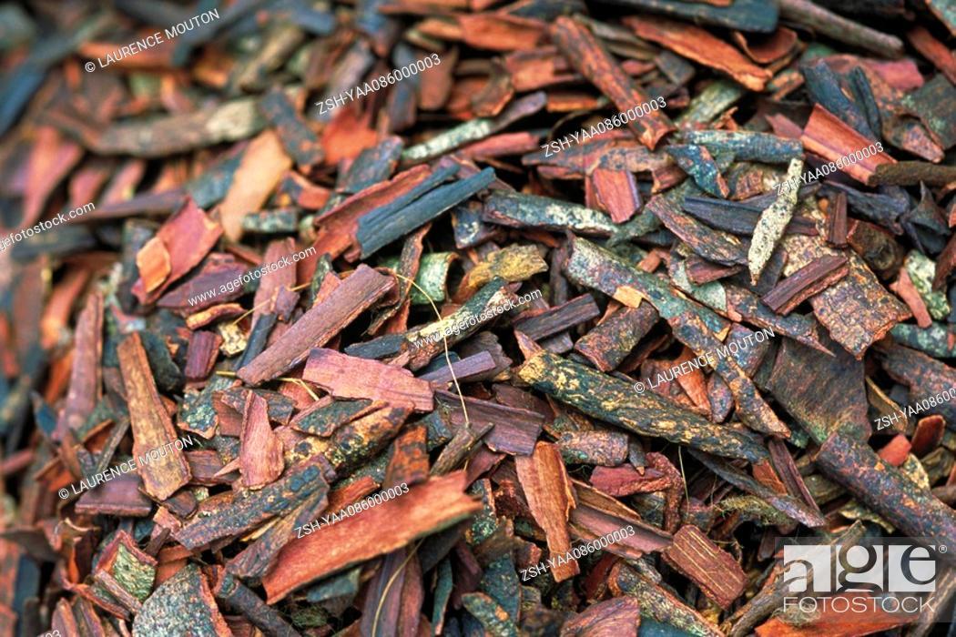 Stock Photo: Cinnamon bark, full frame.