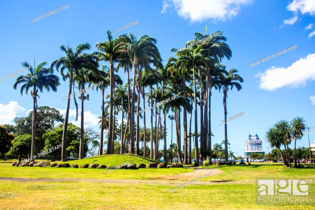 Stock Photo: Palm trees in the 'Savane' chic quarter of Fort de France wit plenty of green space.
