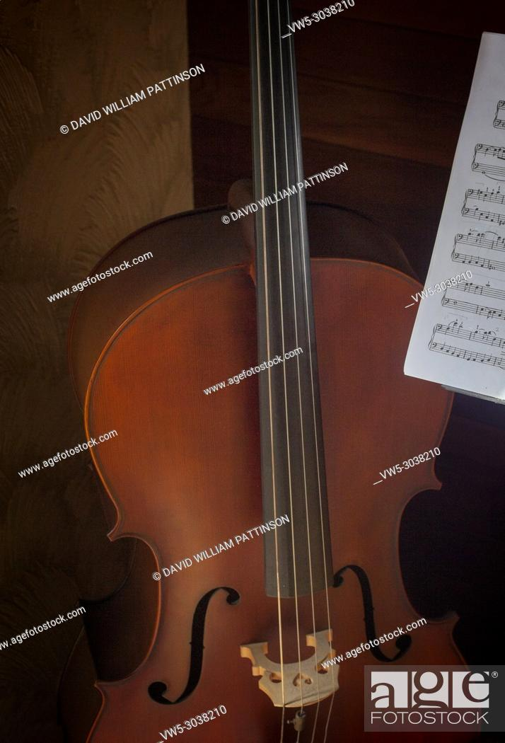 Stock Photo: Cello Kelowna BC Canada.