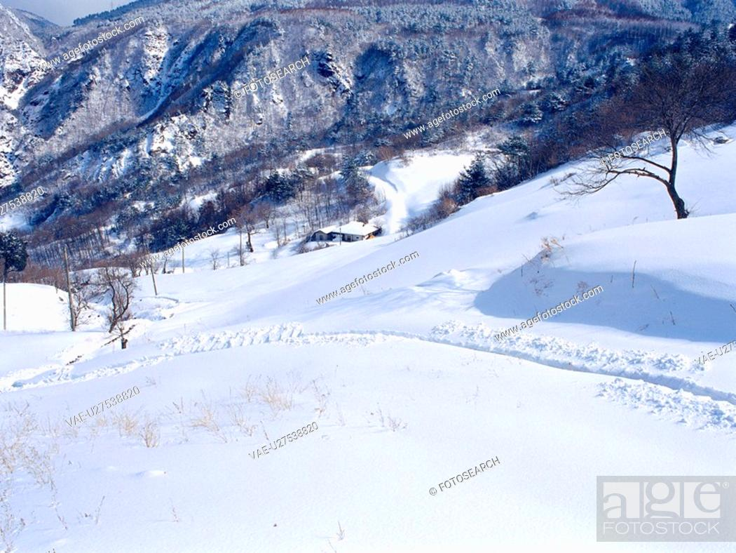 Stock Photo: cold, scenery, mountain, winter, snow, freezing, nature.
