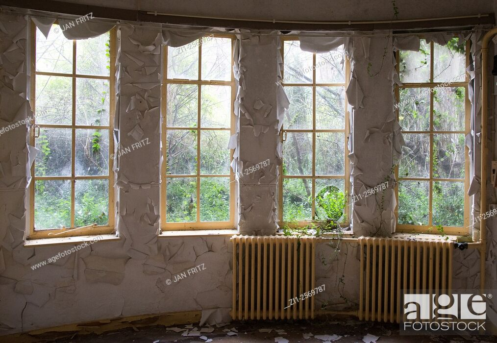 Stock Photo: Room with windows and paint peeling of in abandoned house for the elderly people in holland.