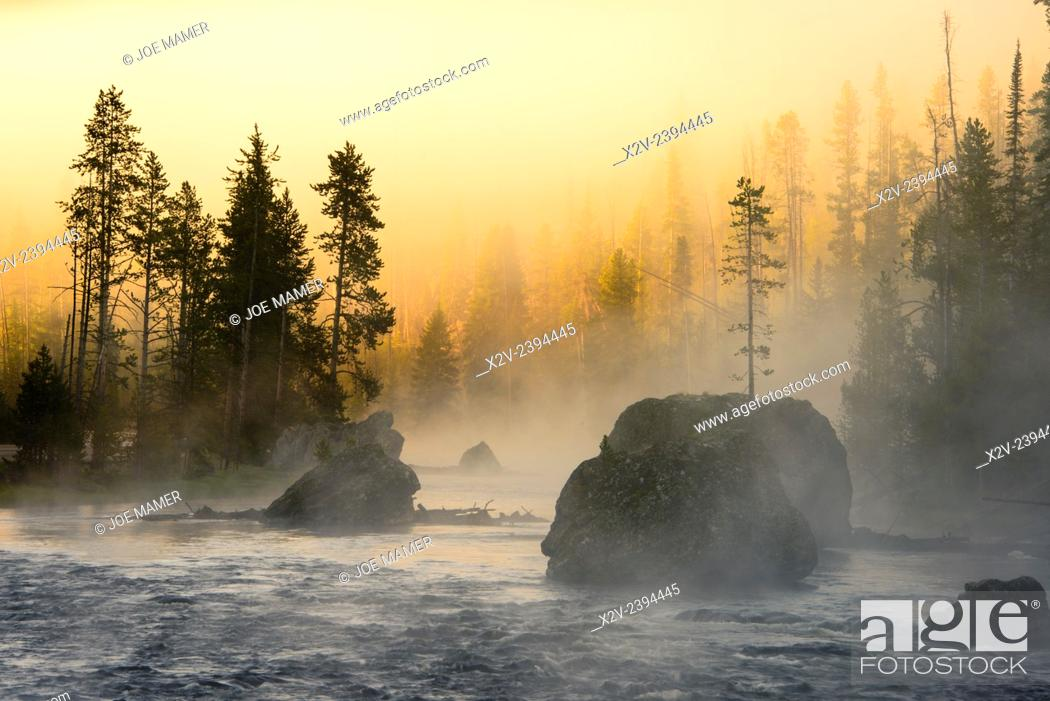 Photo de stock: Foggy sunrise on the Firehole River in Yellowstone National Park.