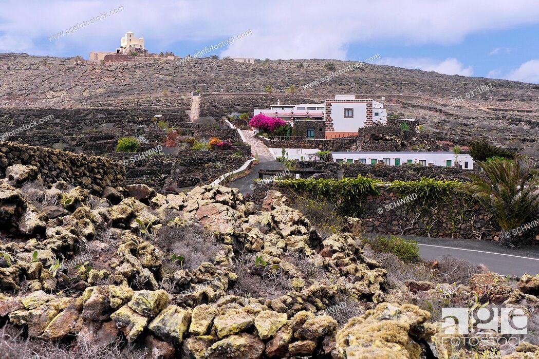 Stock Photo: Villa with garden, Lanzarote, Canaries, Spain, Europe.