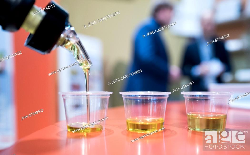 Stock Photo: Two types of olive oil and a rapeseed oil in small plastic cups on display at the Green Week exposition in Berlin, Germany, 17 January 2017.