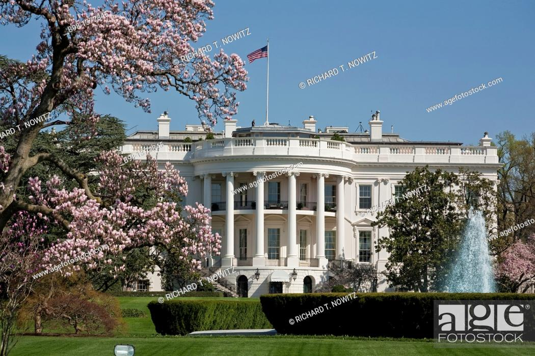 Stock Photo: South lawn of the white house.