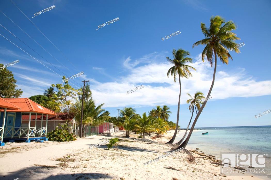 Stock Photo: Village and palms on the beach. Saona Island, Dominican Republic, Caribbean.