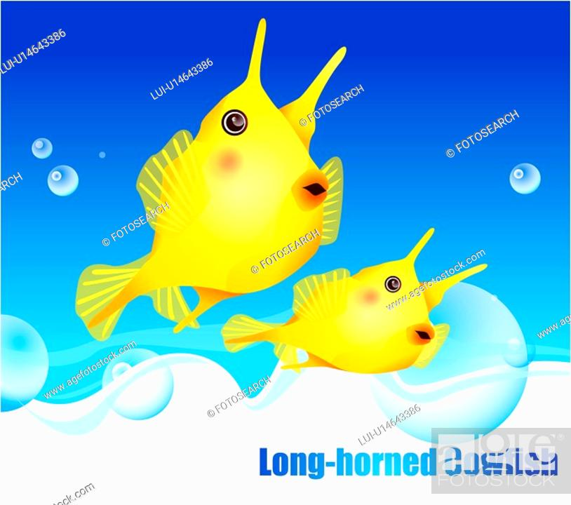Stock Photo: fishes, sea, underwater, undersea, ocean, Long-horned Cowfish.