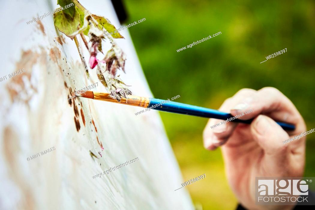 Photo de stock: Close up of an artist applying paint to paper with a brush, and a sprig of plant material over the artwork.