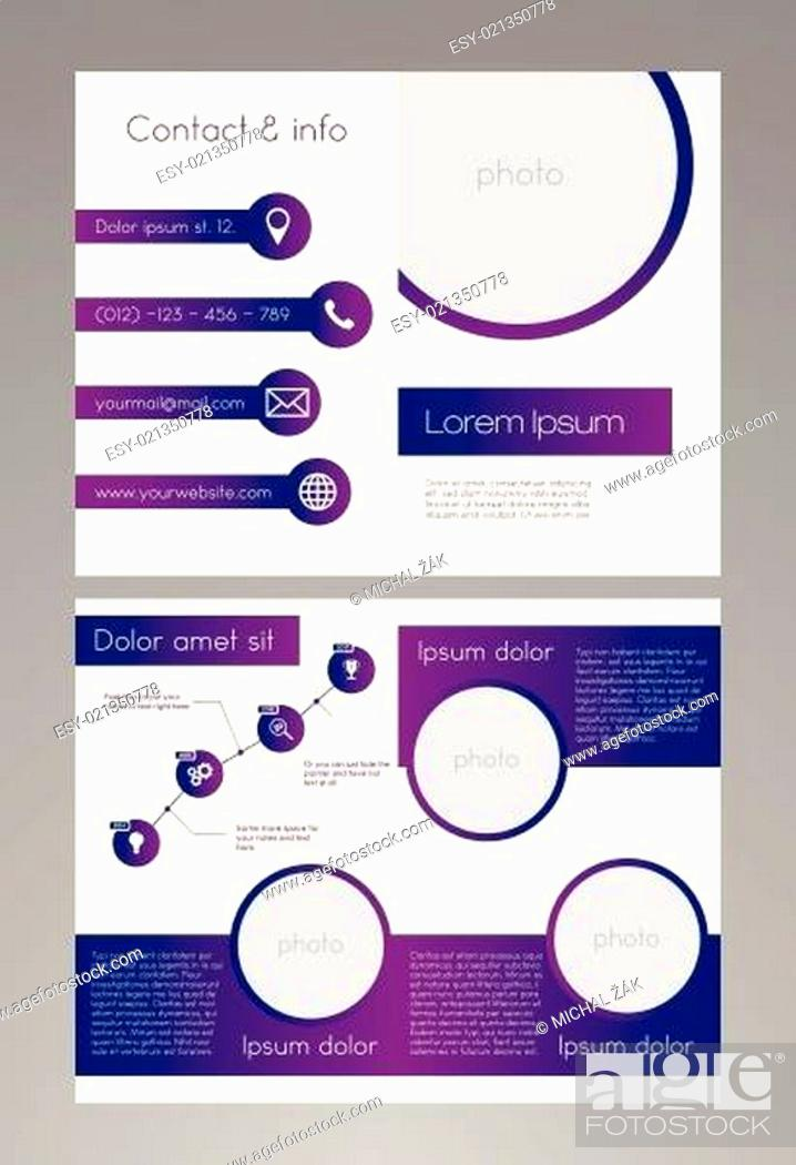 Stock Vector: Business brochure template - purple and white design with editable diagram.
