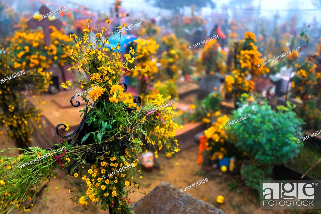 Stock Photo: Flower-decorated gravesites are seen at a cemetery during the Day of the Dead celebrations in Ayutla, Mexico, 1 November 2019.