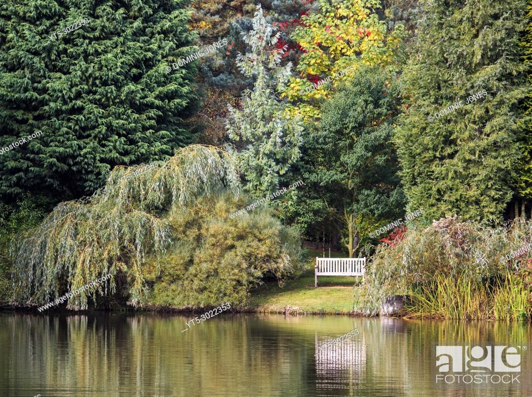 Stock Photo: A peaceful autumn scene at Bodenham Arboretum, Wolverley, Worcestershire, England, Europe.