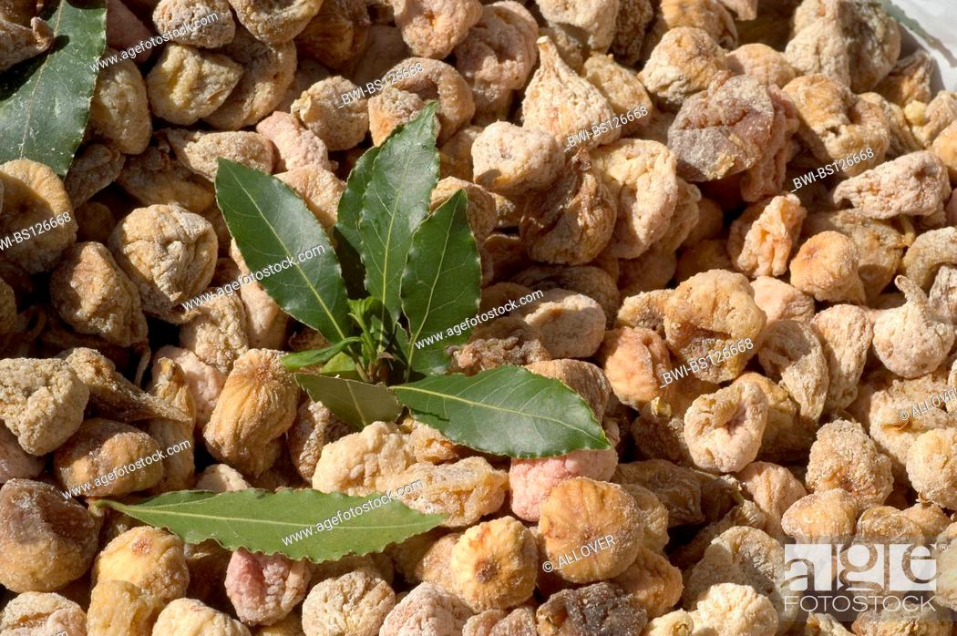 Stock Photo: dried figs with bay leaves for protection against insects.