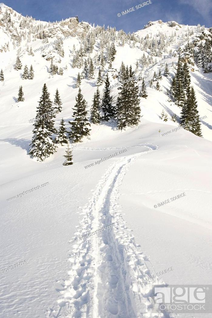 Stock Photo: Tracks in snow.