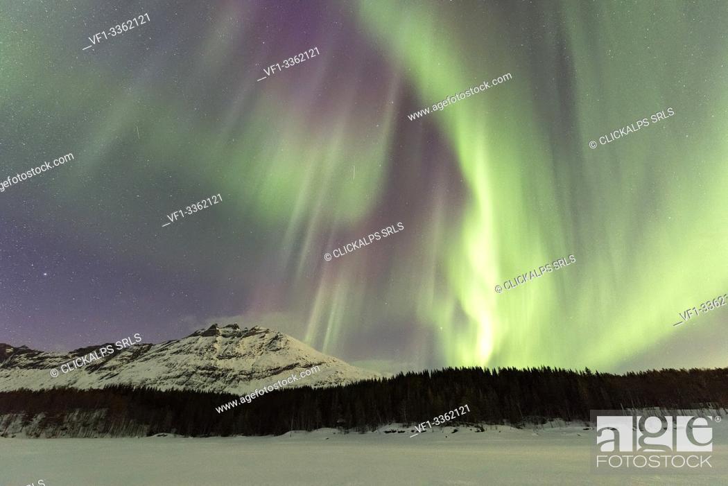 Stock Photo: Northern Lights, Skoddebergvatnet, Grovfjord, Troms county, Lofoten Islands, Norway.