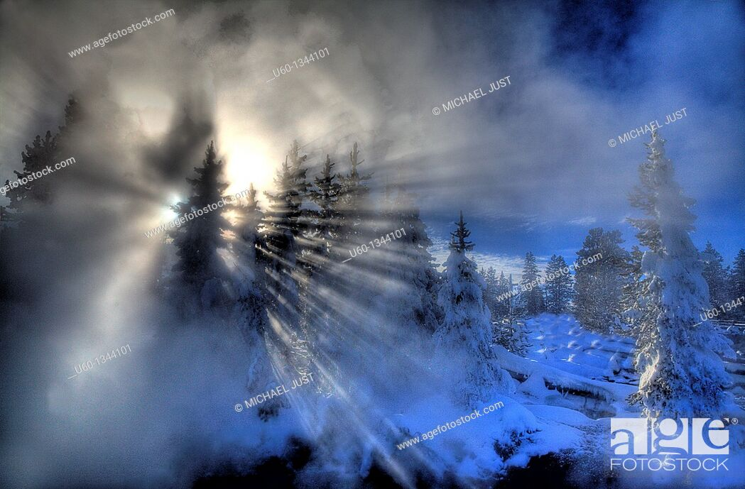 Stock Photo: The sun bursts through the steam and pine trees at the West Thumb Geyser Basin at Yellowstone National Park, Wyoming.