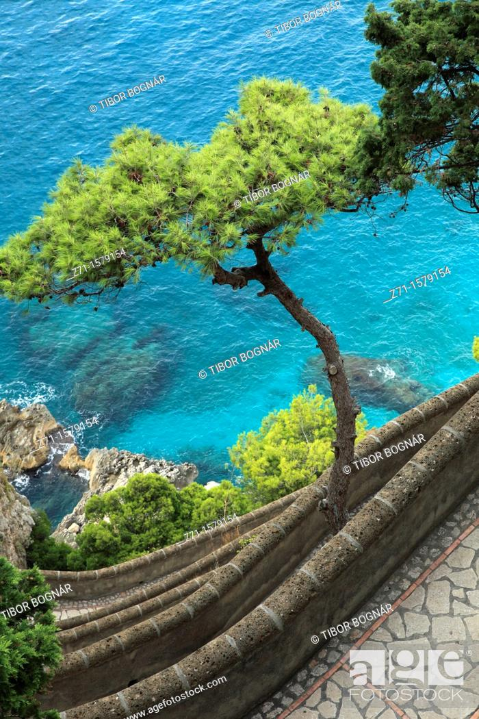 Stock Photo: Italy, Campania, Capri, Via Krupp, scenery,.