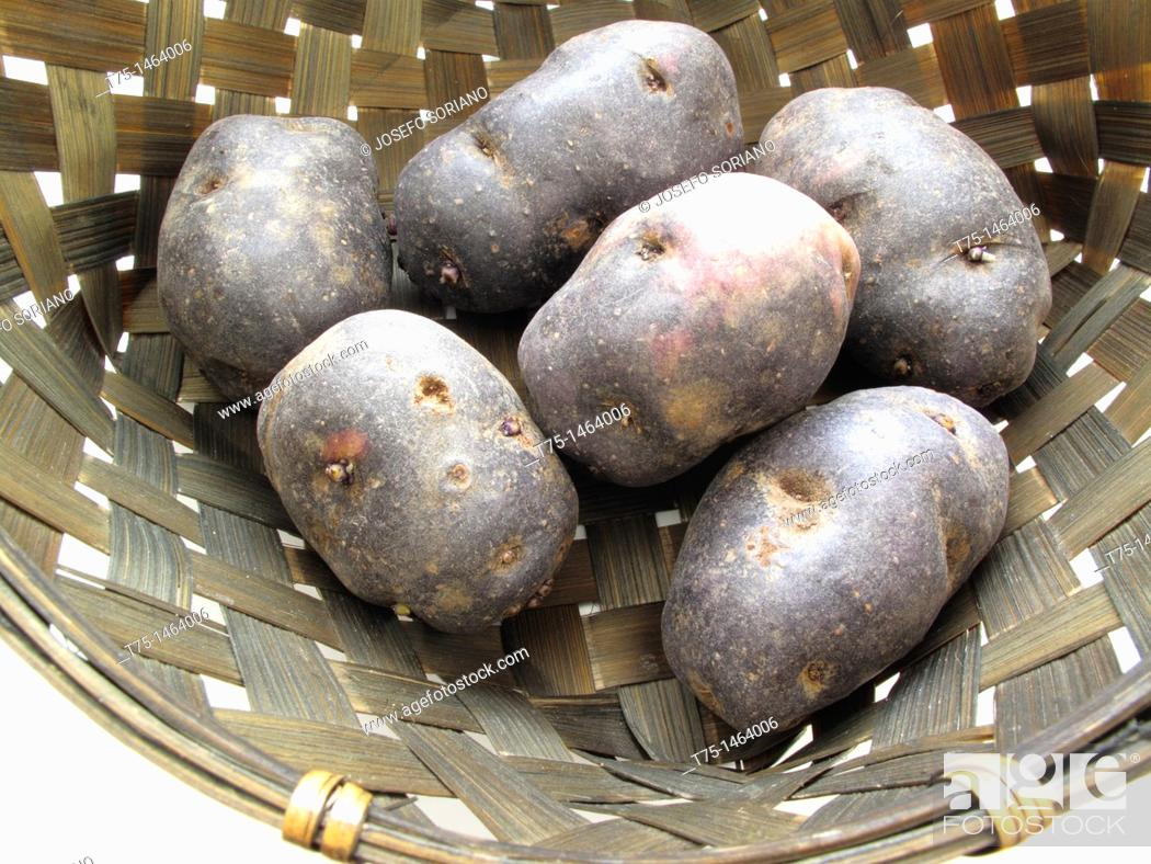 Stock Photo: purple potatoes.