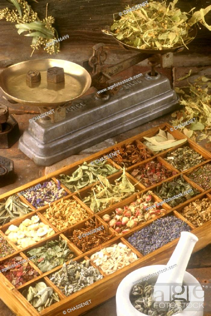 Stock Photo: HERBALIST'S SHOP<BR>Up on the left :  eucalyptus. On the balance :lime. In the mortar : vervain. Different kind of medicinal plantes : lavender.