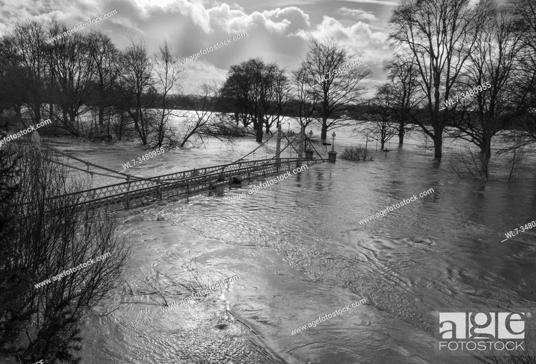 Stock Photo: Victoria foot bridge underwater, record floods reported on the river Wye. Hereford UK. February 2020.