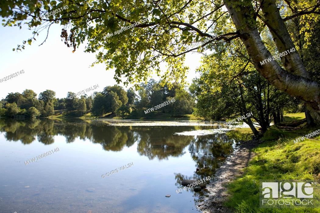 Imagen: Lake trees landscape Scotland tranquil picturesque.