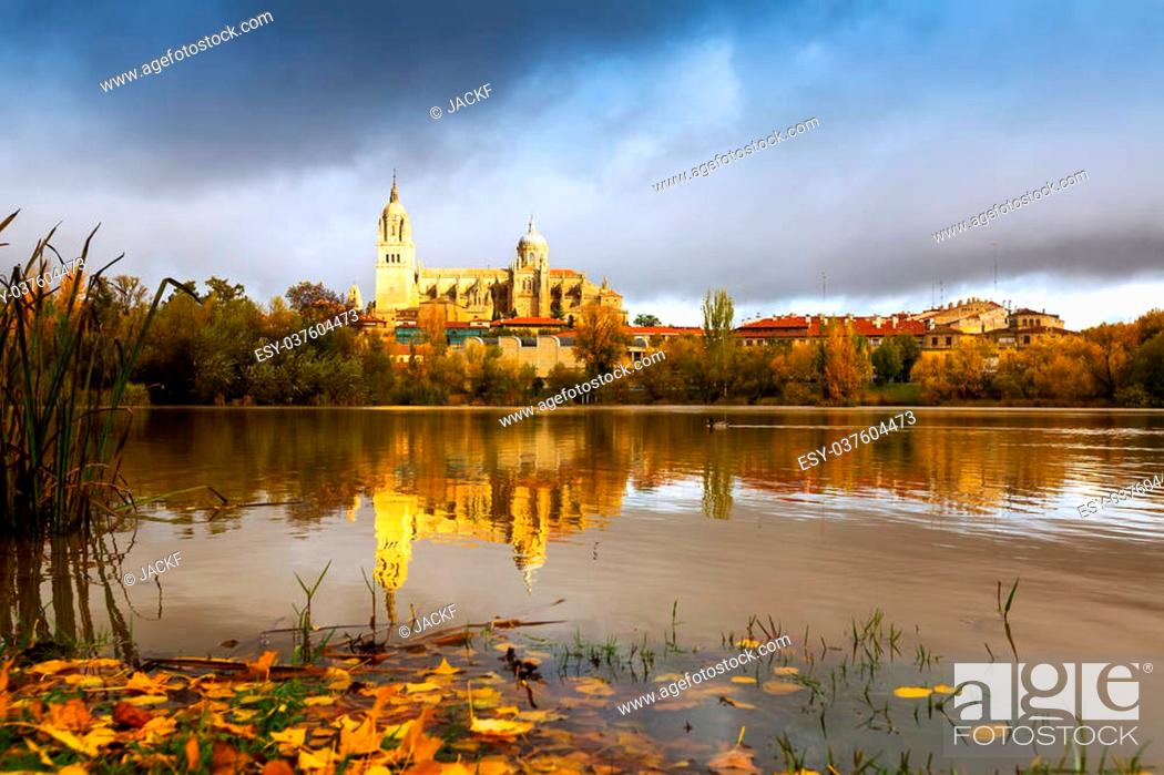 Imagen: Autumn view of Tormes River in Salamanca. Spain.