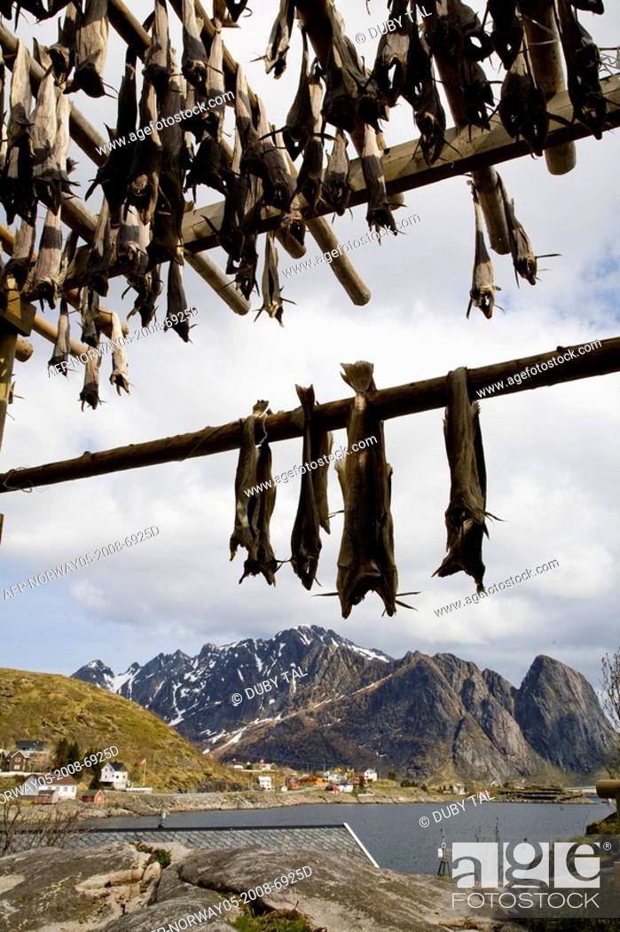 Stock Photo: Photograph of a small Norwegian fishing village.