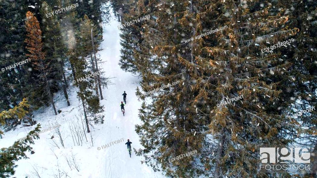 Imagen: Aerial view of mountain bikers riding on road covered by snow in forest outdoors in winter.