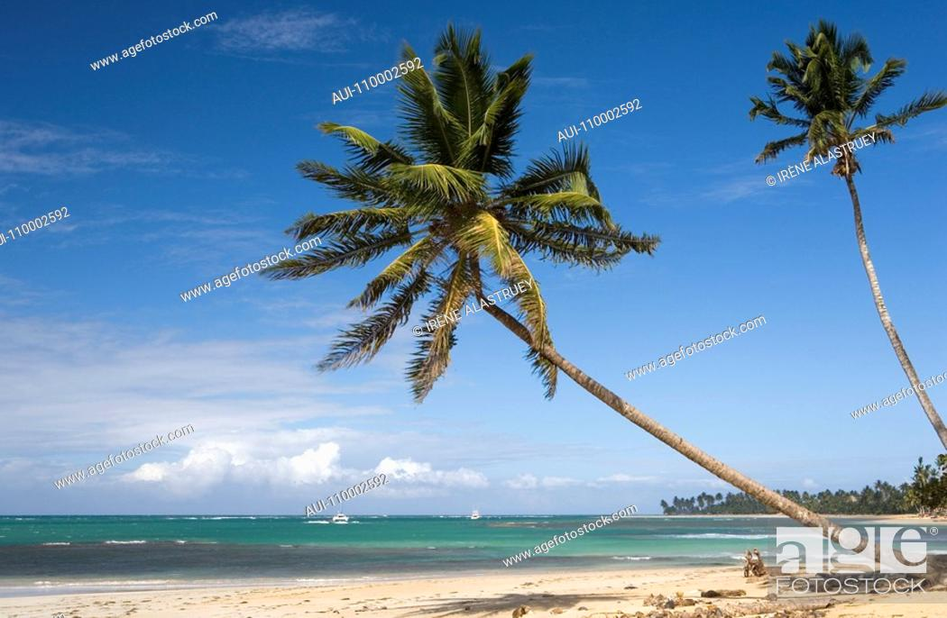 Stock Photo: Dominican Republic - North Coast - Samana Peninsula - Las Terrenas - Playa Las Ballenas.