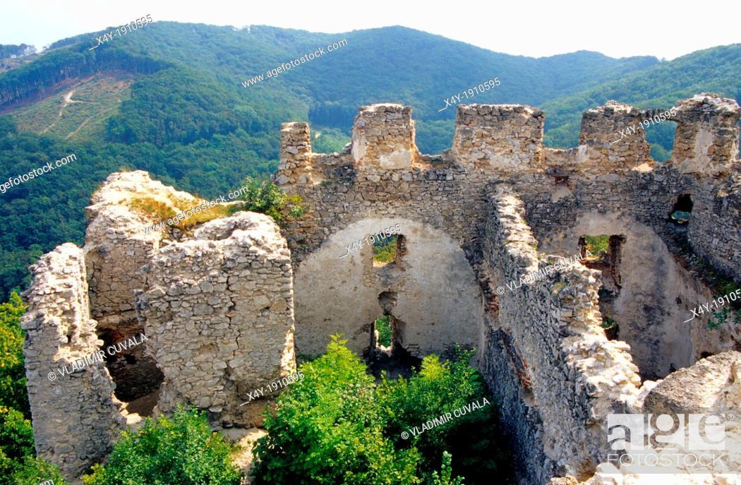 Stock Photo: The ruins of castle Tematin, Povazsky Inovec, Slovakia.