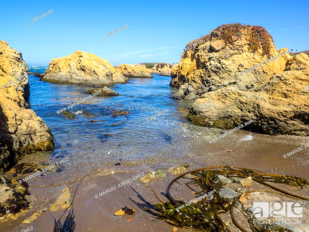 Stock Photo: MacKerricher State Park is a state park in California in the United States. It is located three miles north of Fort Bragg in Mendocino County.