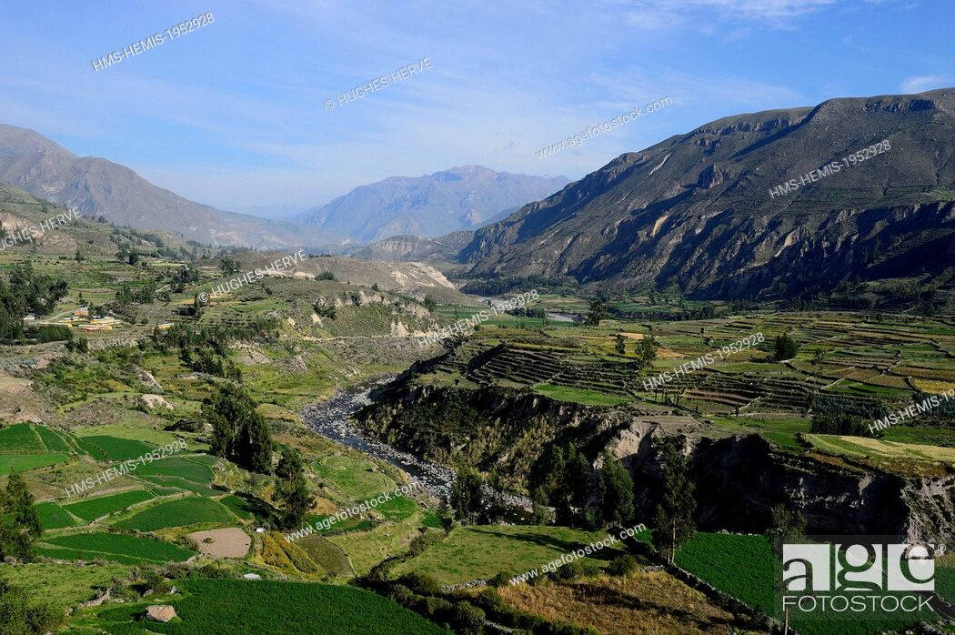 Stock Photo: Peru, Arequipa Province, Chivay, the Inca terraces of Colca Canyon.