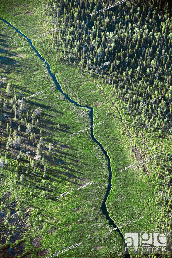 Stock Photo: Small river in forest area, aerial view. Lappland. Sweden.