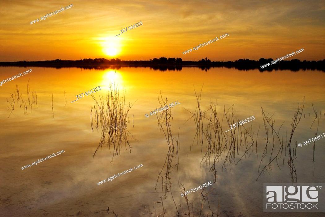 Stock Photo: Villafranca de los Caballeros lagoons natural reserve. Toledo province, Castilla-La Mancha, Spain.