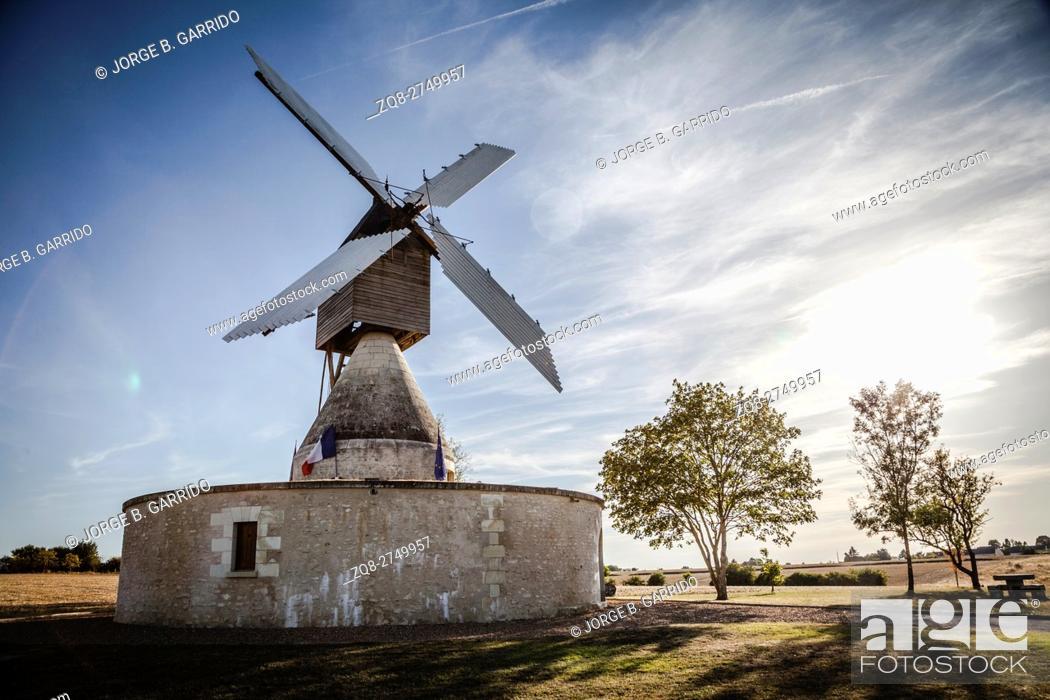 Stock Photo: Windmill and vineyard near Montsoreau, Pays-de-la-Loire, France.