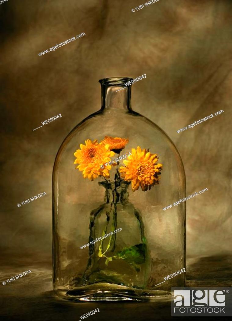 Stock Photo: Bottle with marigolds.