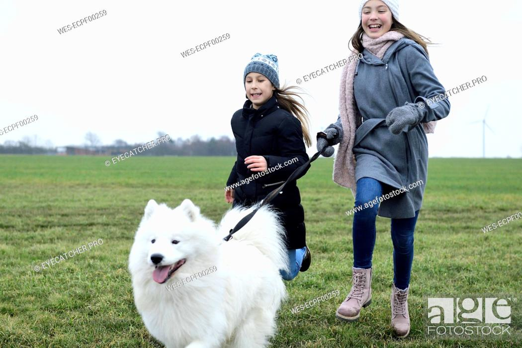 Stock Photo: Two girls running on a meadow with dog having fun.