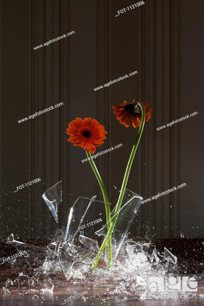 Stock Photo: A vase shattering.