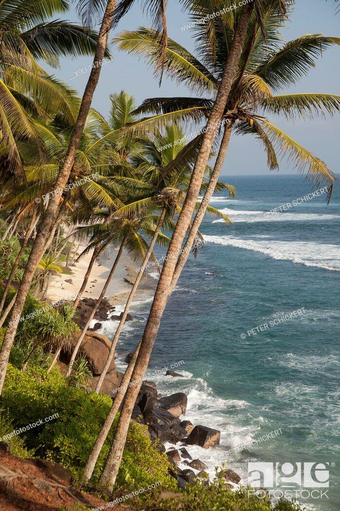 Stock Photo: beach and coast near Mirissa, Sri Lanka.