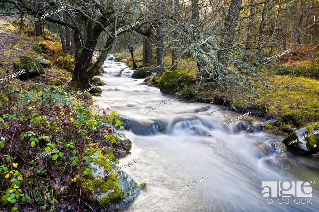 Stock Photo: Acebedas river in the Sierra de Guadarrama, Segovia province, Castile-Leon, Spain.