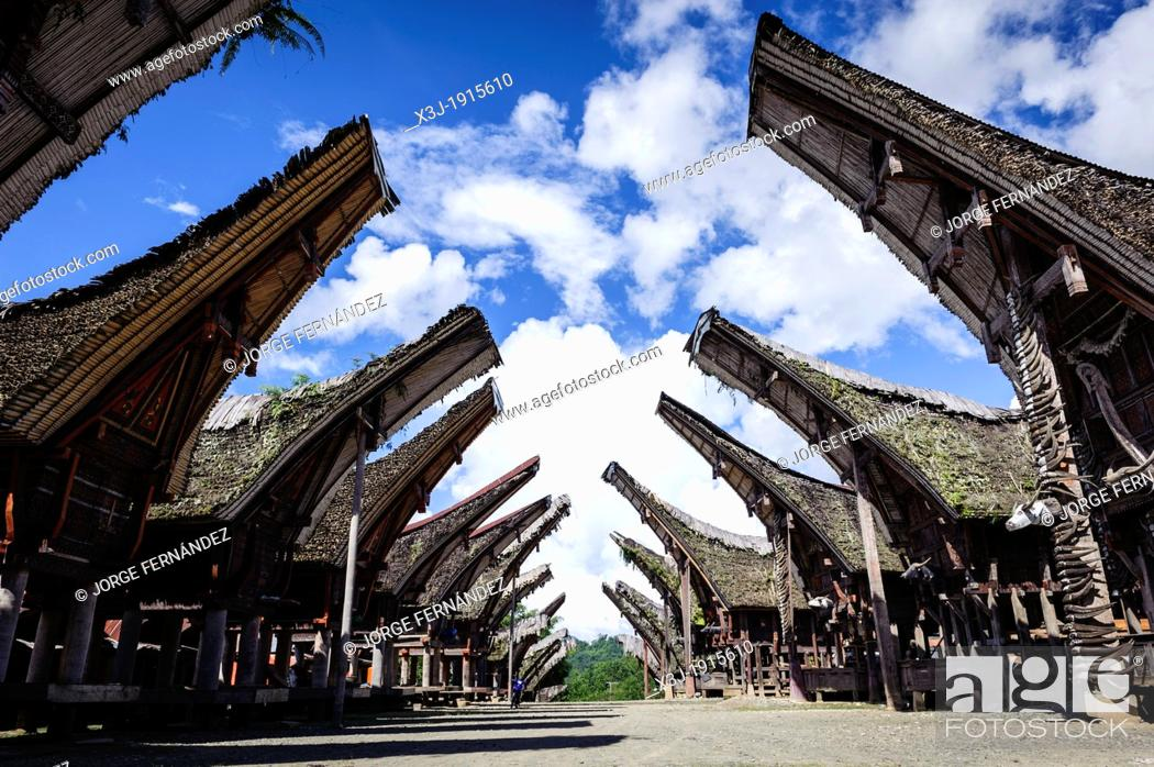Stock Photo: View of a traditional Tana Toraja village with typical houses, Sulawesi, Indonesia.