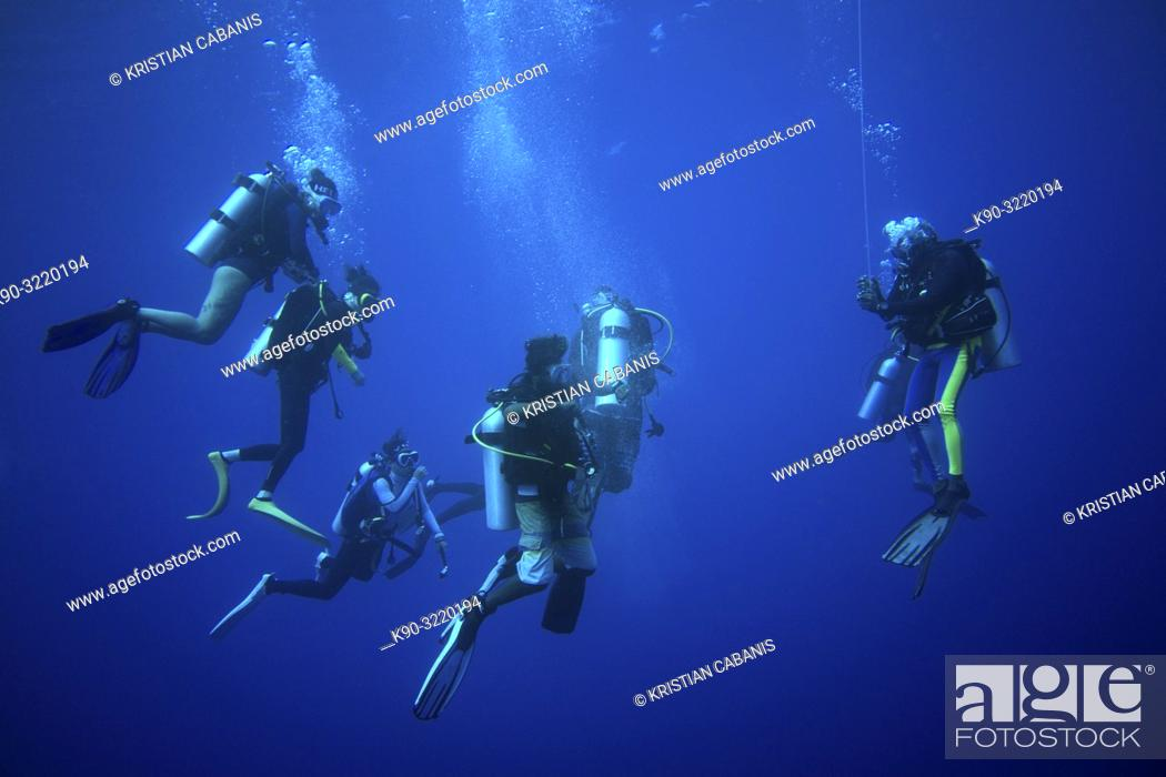 Imagen: Group of diver making the safety stop just under the surface.