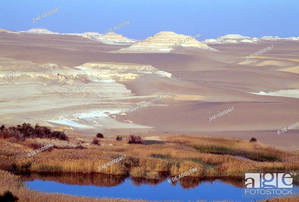 Imagen: Lake in the desert, Siwa oasis, Western desert, Egypt.