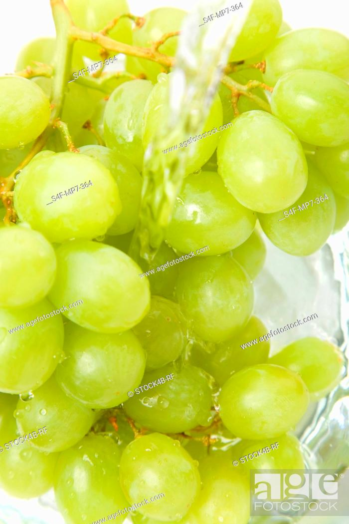 Stock Photo: Green grapes are being washed.