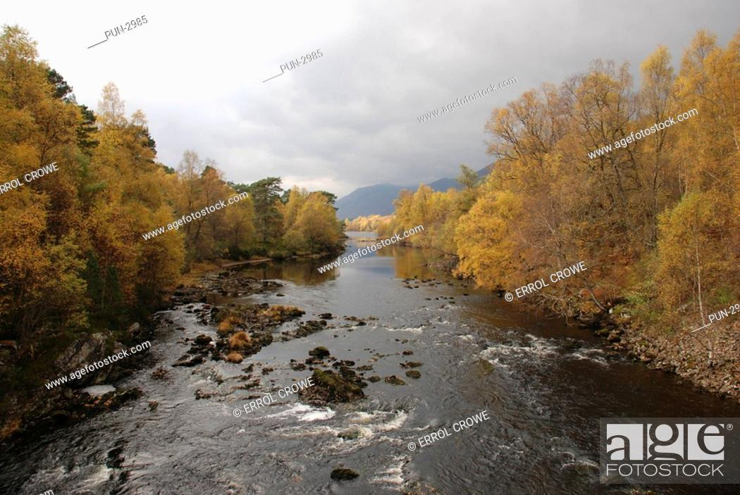 Stock Photo: River Affric and trees in autumn, Glen Affric.