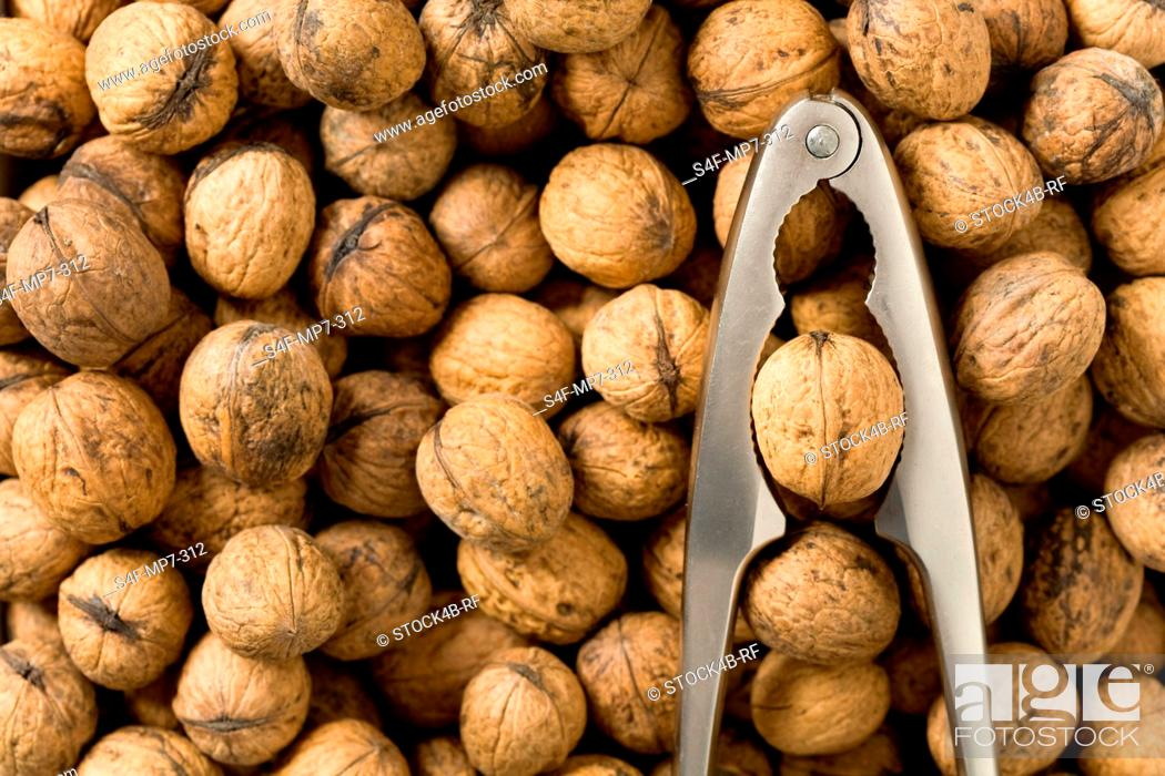 Photo de stock: Detail of walnuts and nutcracker.