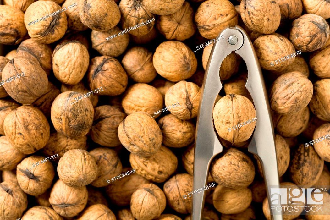 Stock Photo: Detail of walnuts and nutcracker.